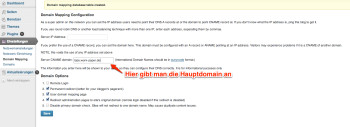 wordpress-domain-mapping-einrichten