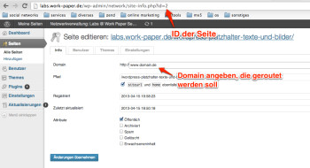wordpress-multisite-domain-einstellen